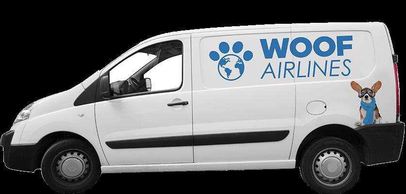 International Pet Transport Service Pet Shipping Services